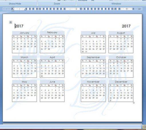 2016-2017 Annual Screen Shot