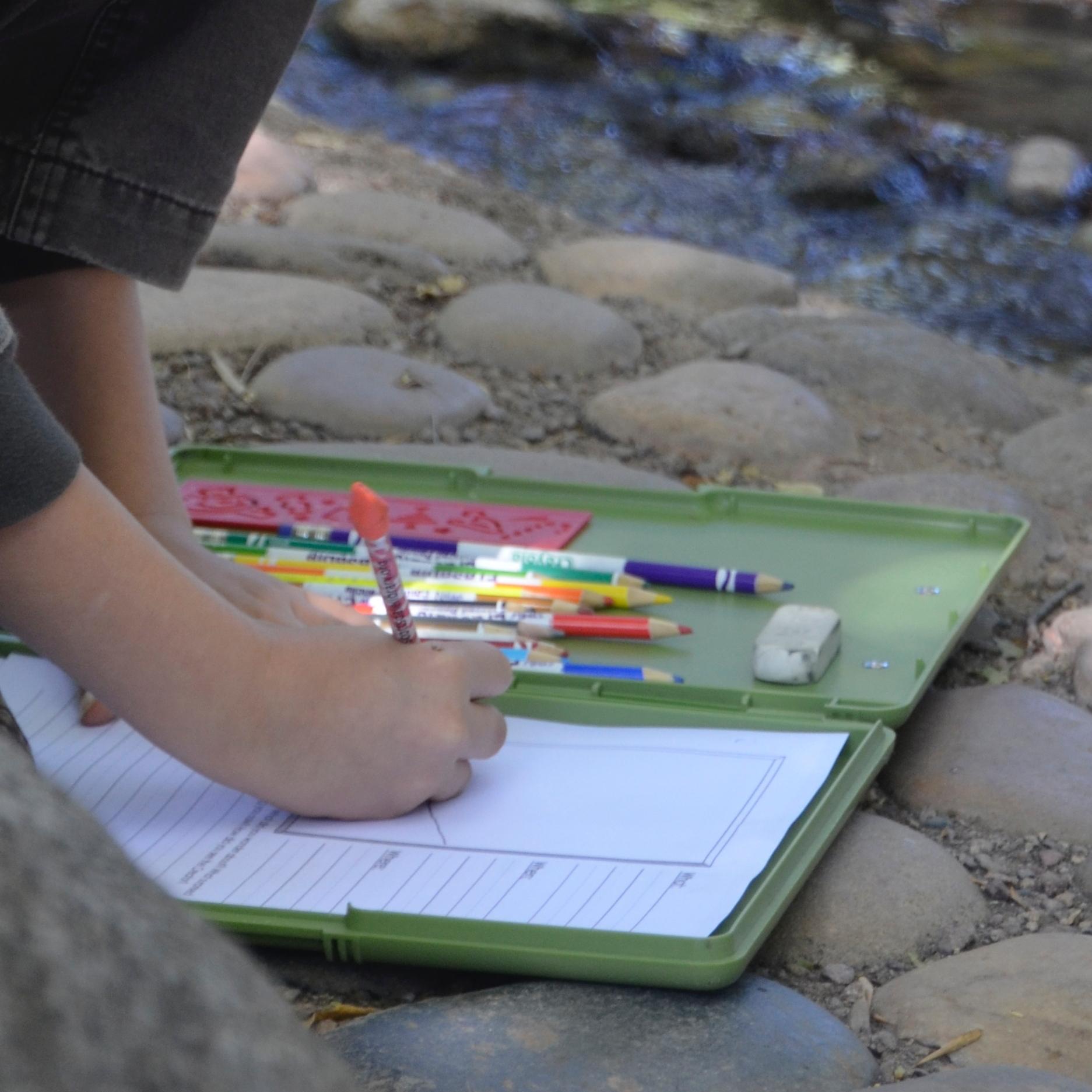 Journalling Nature