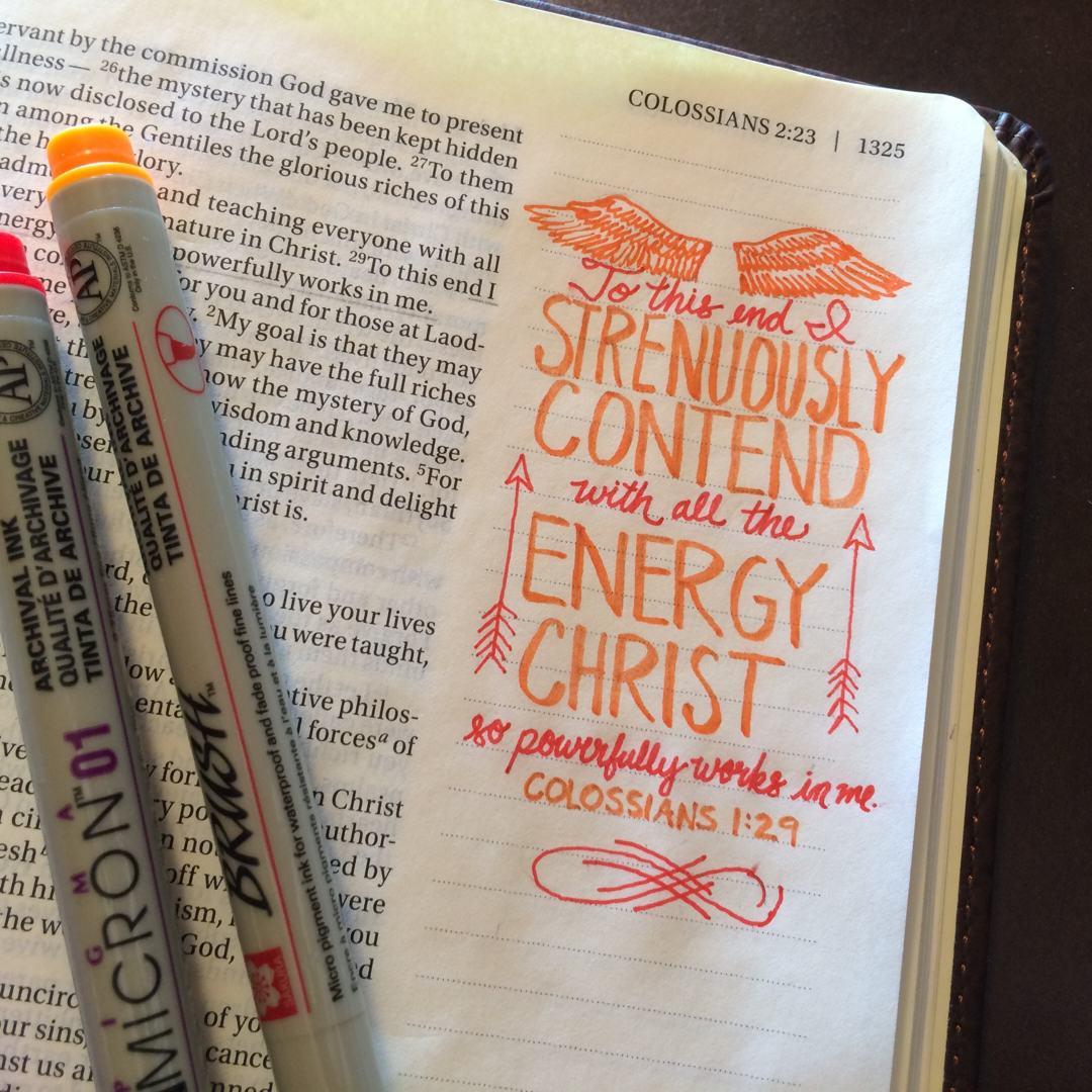 journaling bible NIV Col 1 29