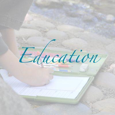 Education- Beyond Art