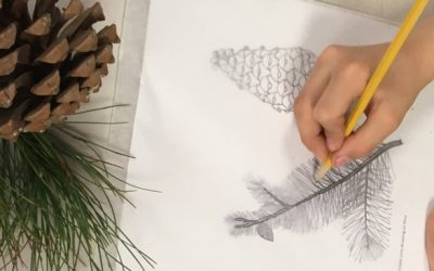 How to Incorporate Tracing into Your Art Curriculum