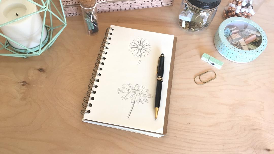 daisy drawing
