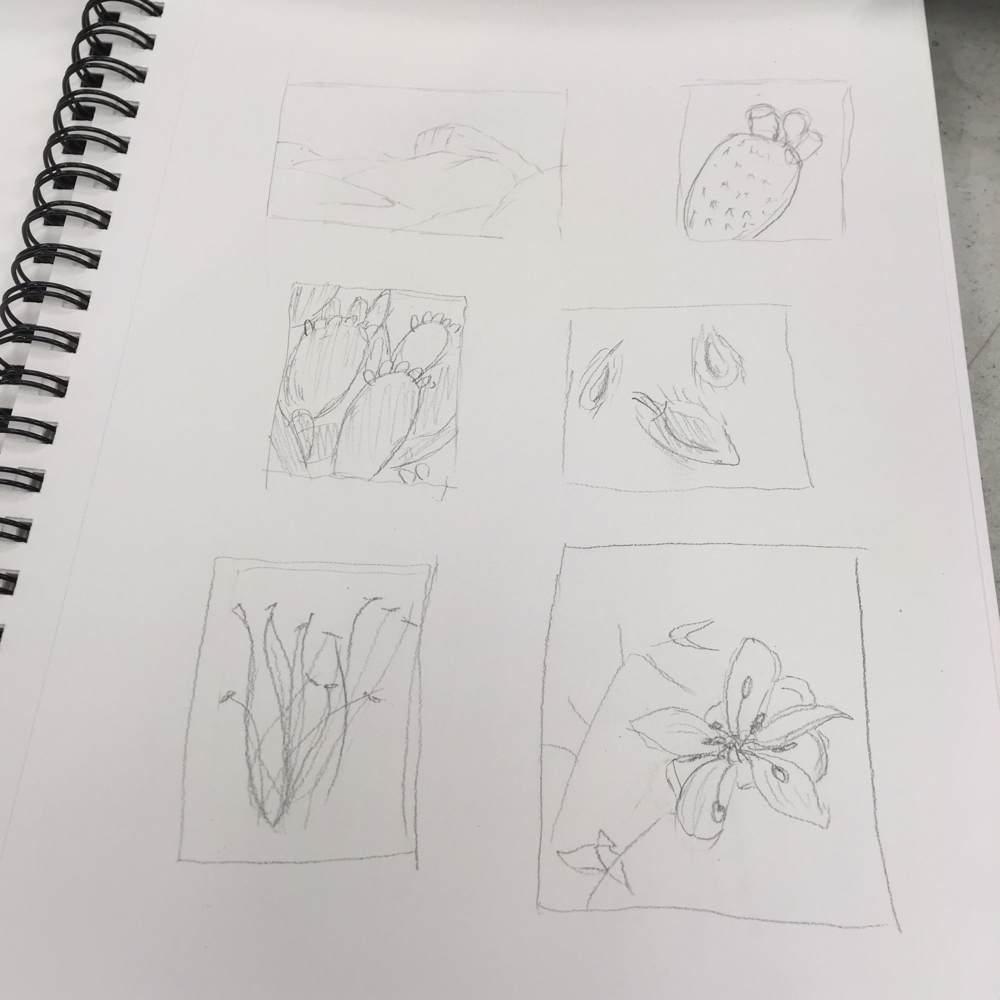 art curriculum- learn to draw fast