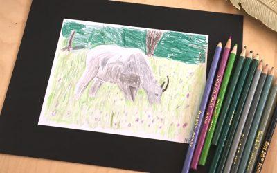 Art Contests for Children