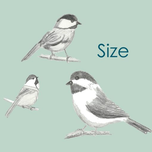 Size, a Method of Perspective