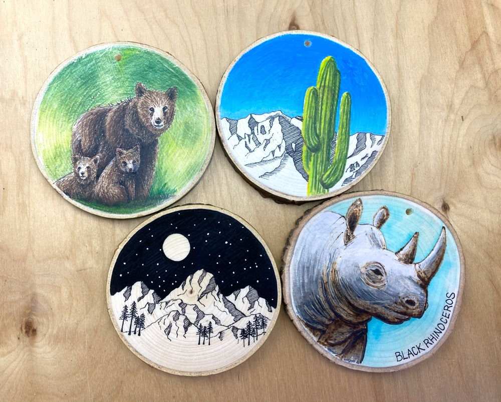 Wood slices from Abbey Oaks